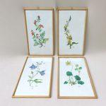 """W91 - Set von 4 Bildern """"Blumen"""", Aquarellmalerei, Unikate, handgemalt, 50er Jahre, bez. W. Kratz"""